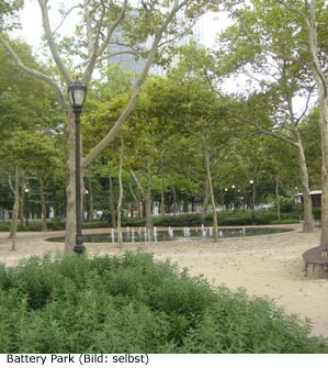Battery Park Natur New-York Manhattan