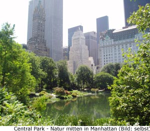 Central Park Natur New-York Manhattan
