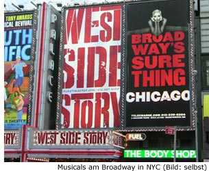 Musicals Broadway New York City Manhattan