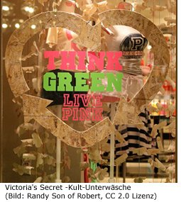 Victoria's Secret Shop New York Manhattan Underwear Unterwäsche Dessous